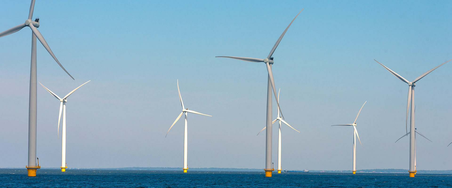 Offshore windfarm | Orga