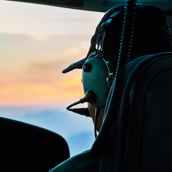 Pilot's vision | Orga